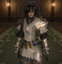 Ffxiv_knight_2